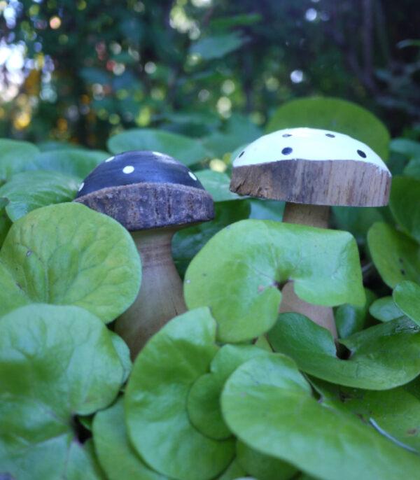 OnlyByGrace svampe i naturen hvid og sort