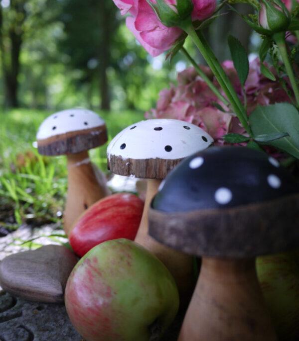 OnlyByGrace svampe i naturen